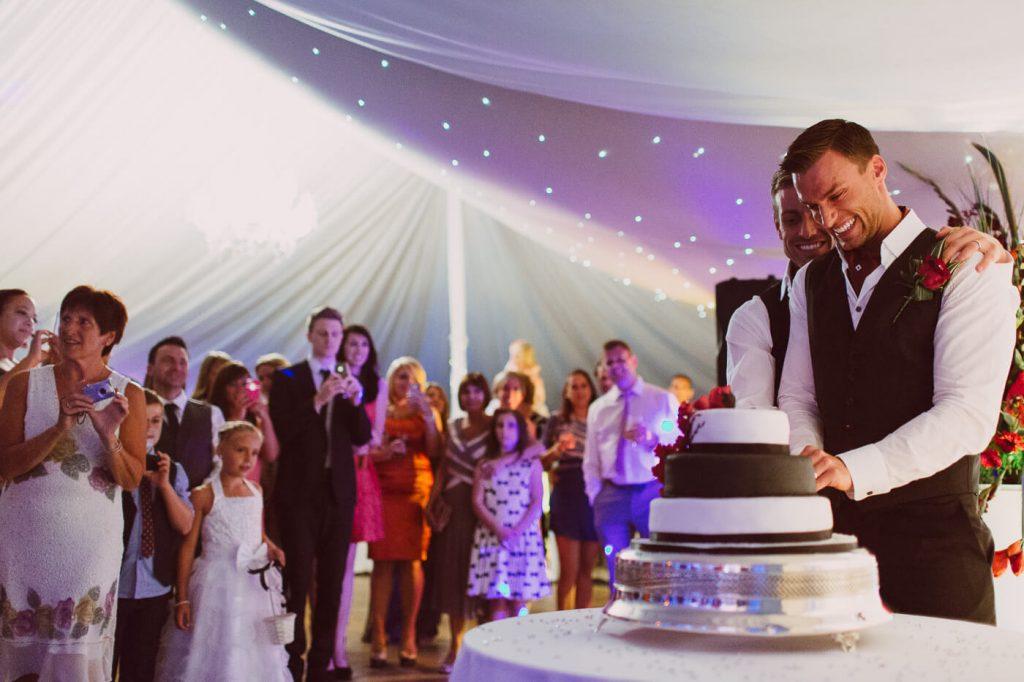 kontrol brides gay wedding